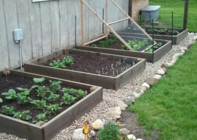 eco on raised beds